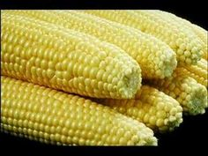 Keep it simple in the summertime with this recipe for How to Boil Corn-on-the-Cob! Corn on the cob, in season, has to be the best way to eat it. Even though I enjoy corn on the cob grilled in the h Korma, Biryani, Polenta, Boil Sweet Corn, Boil Corn On Cob, Corn In The Microwave, Gmo Facts, Boiled Corn, Butter Crust