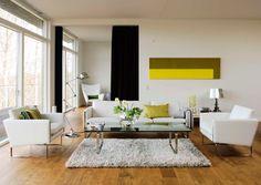Solid frog: Livingroom