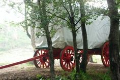 Sleep in an old-fashioned oxwagon. Sa Tourism, South Afrika, Heavenly Places, Free State, Countries Of The World, Beautiful Places, Road Trip, The Past, Old Things