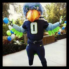 Seattle Seahawks - Blitz