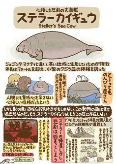 ステラーカイギュウ Steller's sea cow