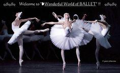❥Mariinsky Swans, (by © Gene Schiavone) https://www.facebook.com/groups/W.W.Ballet/