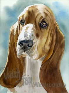 BASSET HOUND Dog Pet Portrait Giclee Watercolor Art by k9stein