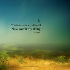 You have seen my descent 🦅 Now watch me rising. Rumi Love Quotes, Life Quotes Love, Wisdom Quotes, Words Quotes, Wise Words, Qoutes, Sayings, Respect Quotes, Intp