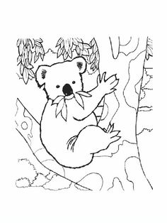 Savanna 1 Adult Coloring Pages