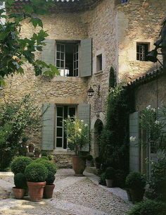 Courtyard beauty