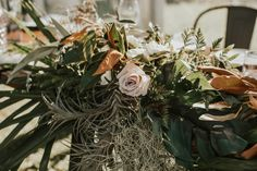 Emily and Matt - Renee Edwards Photography Things To Come, Plants, Photography, Wedding, Valentines Day Weddings, Photograph, Fotografie, Photoshoot, Plant
