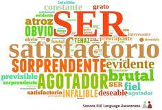B1 - Adjetivos que sólo se usan con el verbo SER.