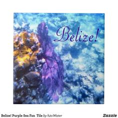 Purple Sea Fan Tile created by Personalize it with photos & text or purchase as is! Great Pictures, Beautiful Pictures, Great Blue Hole, Belize Barrier Reef, Nautical Bath, Ambergris Caye, Cruise Destinations, Caribbean Sea, Office Gifts