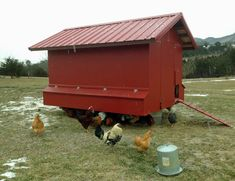 Eggmobile: Bauernhof Kitsteiner Style | Temperate Climate Permaculture