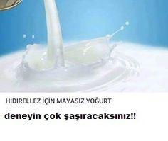 Hıdırellez için mayasız yoğurt