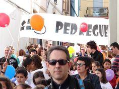 01 - Cercavila Trobades d'Escoles en Valencià 2013 a Pedreguer (342) Foto: laveupv.com