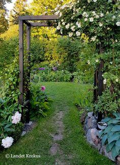 Landet Krokus: En helt ny trädgård - All About Garden Arbor, Backyard Garden Design, Garden Trellis, Garden Paths, Backyard Landscaping, Back Gardens, Outdoor Gardens, Amazing Gardens, Beautiful Gardens