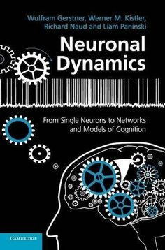 From neuron to brain fifth edition 9780878936090 john g nicholls neuronal dynamics from single neurons to networks and models of cognition fandeluxe Gallery