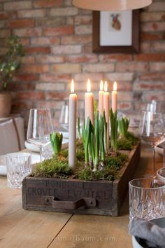 Uncomplicated and natural – table decorations in January – Container Gardening Uncomplicated and natural – table decorations in January- Unkompliziert und natürlich – Tischdeko im Januar Uncomplicated and natural – table decorations in January - Spring Decoration, Decoration Gris, Decoration Table, Desk Decorations, Diy Candles, Scented Candles, Fete Halloween, Succulent Terrarium, Deco Table