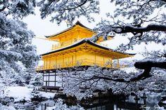 京都の金閣寺は雪の日にめっちゃ綺麗でした。皆さんは機会があれば、ぜひ行ってください!