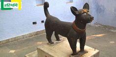 100 सालों से हो रही है कुत्ते की कब्र की पूजा, मन्नत होती है पूरी http://www.haribhoomi.com/news/religion/religion/dog-graves-worship-up-sikandrabad/52163.html