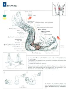 Crunches ~ Repinned by Crossed Irons Fitness