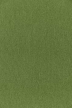 64937 Palermo Mohair Velvet Grass by Schumacher Fabric Luxury Flooring, Velvet Color, Green Rooms, Concept Home, Schumacher, Fabric Wallpaper, Joanns Fabric And Crafts, Fabric Samples, Palermo