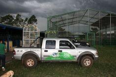 Green Farm Green Farm, Vehicles, Car, Vehicle, Tools