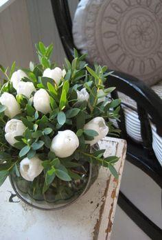Weisse Tulpen mit Buchs <3