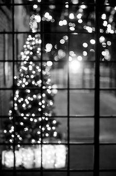 Bokeh is the visual quality of the out-of-focus areas of a photo. Here are some great examples of Bokeh photography. You can check out the previous episode Black Christmas, White Christmas Lights, Decorating With Christmas Lights, Christmas Tree Farm, Christmas Time, Christmas Crafts, Bokeh Photography, Christmas Photography, Inspiring Photography