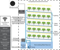 growing-container-diagram-web-page Mehr