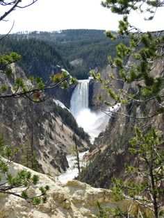 Yellowstone...would love to go there some day...