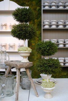 Florist's Shelves