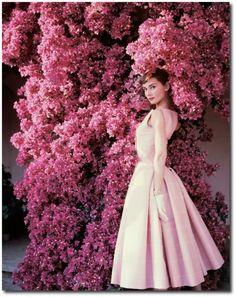 Norman Parkinson Audrey Hepburn Vogue 1955