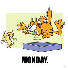 Mondays. Garfield | The Garfield Trail in Grant County Indiana | The Garfield Trail | Grant County Indiana | Fairmount Indiana | Marion Indiana | Gas City Indiana