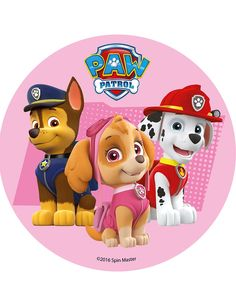 Sky Paw Patrol, Paw Patrol Cake, Paw Patrol Party, Paw Patrol Sayings, Paw Patrol Stickers, Happy Birthday Baby, Twin Birthday, 4th Birthday, Paw Patrol Invitations