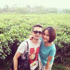 #kemuning #kebunteh #jawatengah #indonesia