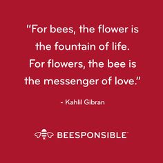 Let's All Beesponsible. Inspirational Quotes For Women, Inspirational Message, Great Quotes, Bee Quotes, Nature Quotes, Was Ist Pinterest, Bee Cards, Kahlil Gibran, Garden Quotes