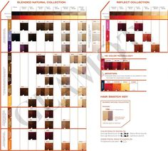 Matrix hair color charts with socolor color chart matrix color sync