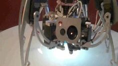 iC Hexapod face-tracking robot