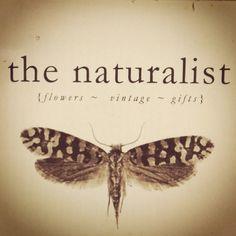 My Logo...! #flowers #naturalist #thenaturalist