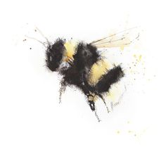 Impression contemporaine de mes aquarelles originales BUMBLE BEE 2 imprimé en utilisant de l'encre epson ultrachrome sur du papier de qualité archivage 315 g.