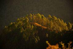 Mussoorie, Uttarakhand | Hill stations of India