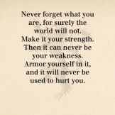 Never forget what you are, for surely.