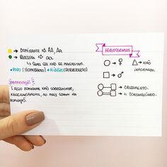 BIOLOGIA - Primeira lei de mendel. #resumosonhodamedicina #resumos #medicina #biologia