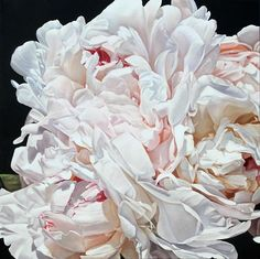 Thomas Darnell painting of Peonies
