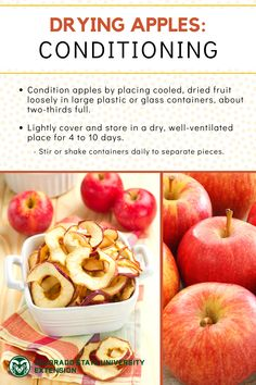 Drying is a great way to preserve produce for use year round! Learn more about preserving apples by visiting the link. Preserving Apples, Preserving Food, Food Safety, Dried Fruit, Glass Containers, Preserves, Colorado, Nutrition, Link