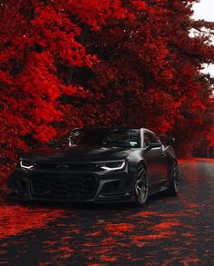 Camaro - Cars and motor Camaro Zl1, Chevrolet Camaro, Camaro Auto, Corvette, Luxury Sports Cars, Top Luxury Cars, Sport Cars, Luxury Auto, Bmw Autos
