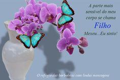 O refúgio das borboletas: A parte mais sensível do meu corpo se chama...    ...