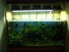 Светодиодные (LED) прожектора и аквариум - Аквафорум города Ровно