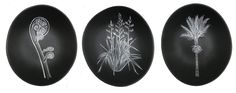 This sweet little bowls, featuring NZ native plants, are designed by Jo Luping Silver Fern, Auckland New Zealand, Party Stores, Native Plants, Ceramic Bowls, Cushion Covers, Bird Feeders, Garden Tools, Christmas Decorations
