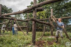 Volunteers help with construction work
