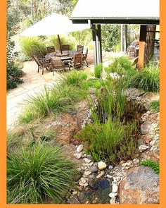 don't forget the grasses Modern Australian Garden, Australian Style, Australian Plants, Dry Riverbed Landscaping, Backyard Landscaping, Landscaping Ideas, Front Garden Landscape, House Landscape, Garden Ideas Next To House