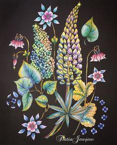 Instagram media tiatiajewjew - 野の花のぬり絵ブック 今回も一部パステルの他は、お花も葉っぱも全部色鉛筆です キラキラ継続中です✨✨ . .  #塗り絵で被災地を励ましたい .  #野の花のぬり絵ブック#大人の塗り絵#大人のぬり絵#大人のぬりえ#大人ノ塗リ絵#おとなのぬりえ#ぬりえ#コロリアージュ#coloriage#coloringart#coloringbooks#水彩色鉛筆#ステッドラー#水筆#無印良品#色鉛筆#ダイソー#daiso#パステル#アイシャドウ#ダーウィン#デコレーゼ#デコ#花#マリアトロッレ#wildflowers